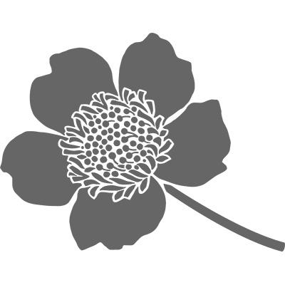 Boutique Blossom