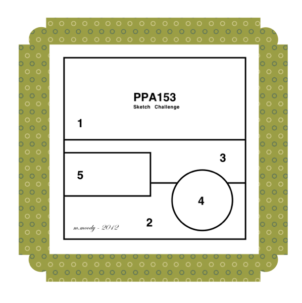 PPA 153