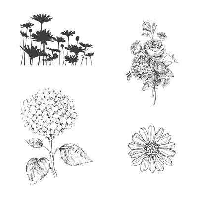Best of Flowers CM