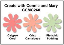 CCMC 260 -1