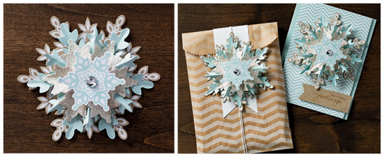 Snowflake Ornament Demo Nov13 NA