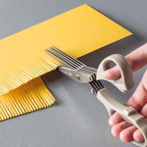 Fringe Scissors