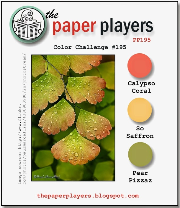 Paper Players #195