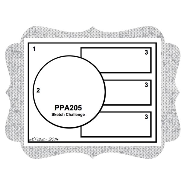 PPA 205