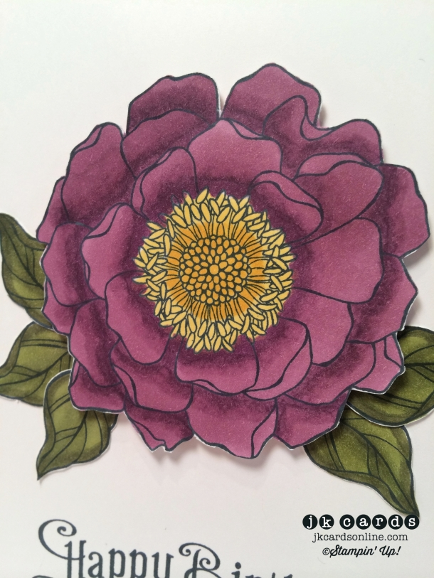 Single Belnded Bloom Close-WM