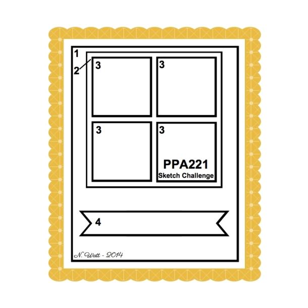 PPA 221