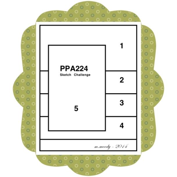 PPA 224